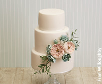 Succulent wedding cake by Fran Willoughby from www.cakesandsugarcraft.com